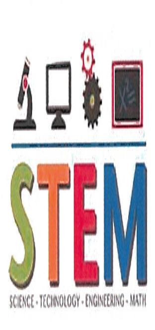 Guide to the requirements for the STEM projects